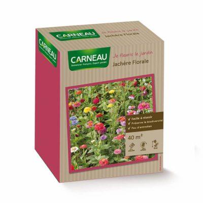 Цветна поляна с циния - Jachere florale