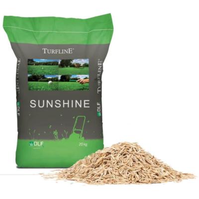 Сухоустойчива тревна смеска тип САХАРА
